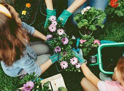 Herlig med hage